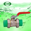 PPR Flexible Brass Ball Valve XM4016